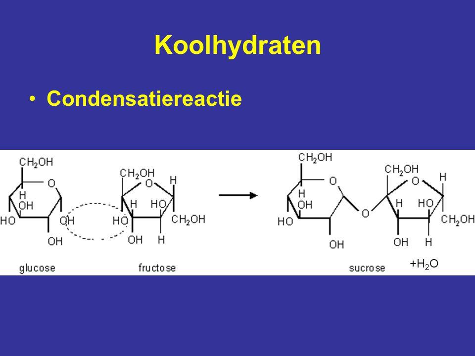 Lipiden Vetzuren (carboxylgroep)