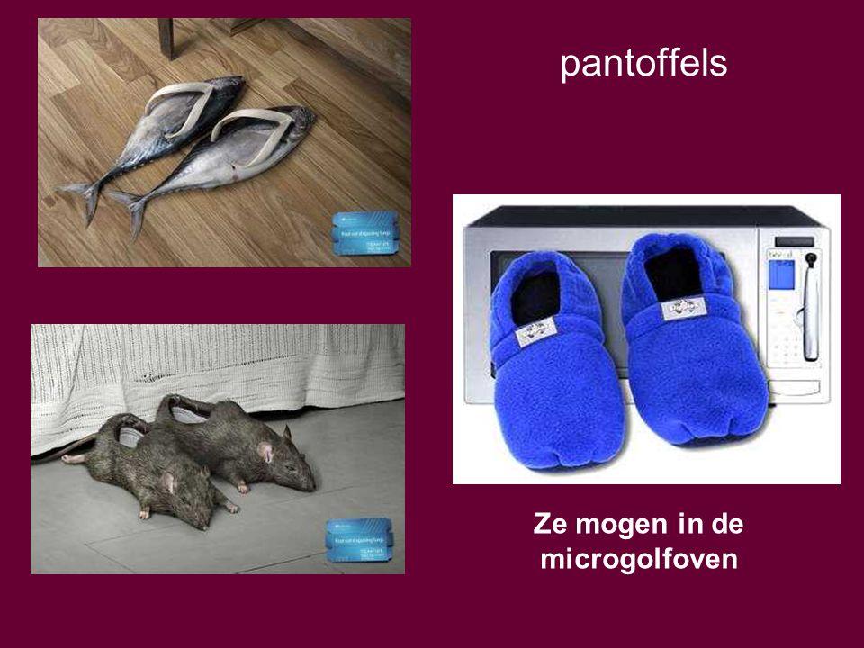 pantoffels Ze mogen in de microgolfoven