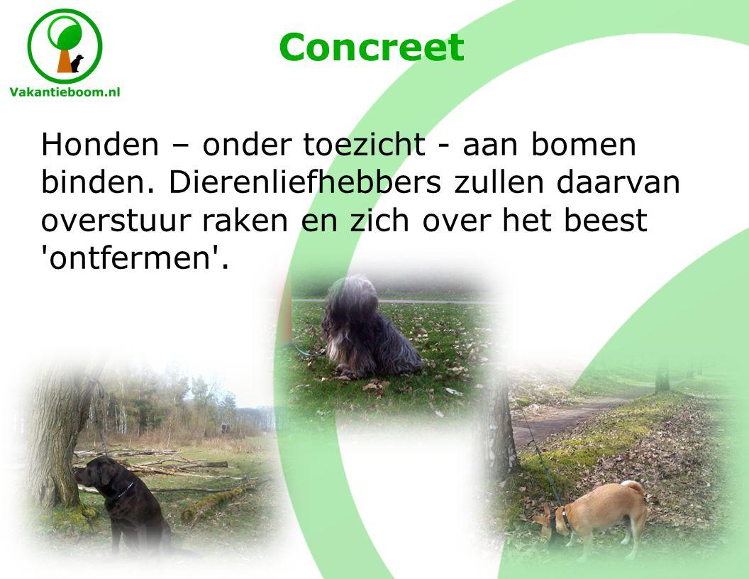 Concreet Honden – onder toezicht - aan bomen binden.
