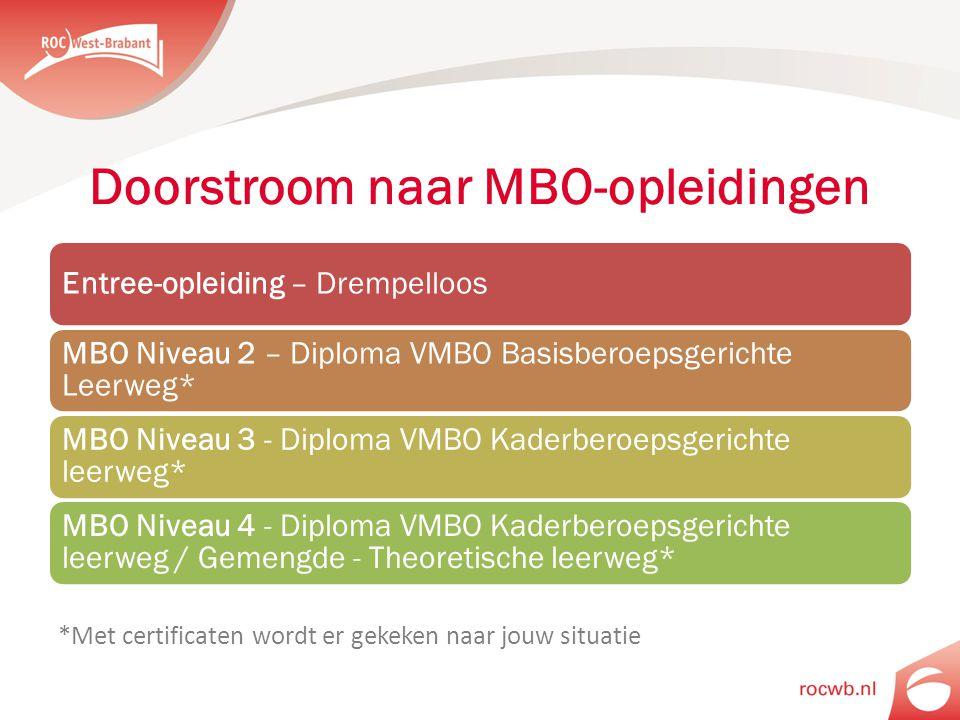 Doorstroom naar MBO-opleidingen Entree-opleiding – Drempelloos MBO Niveau 2 – Diploma VMBO Basisberoepsgerichte Leerweg* MBO Niveau 3 - Diploma VMBO K