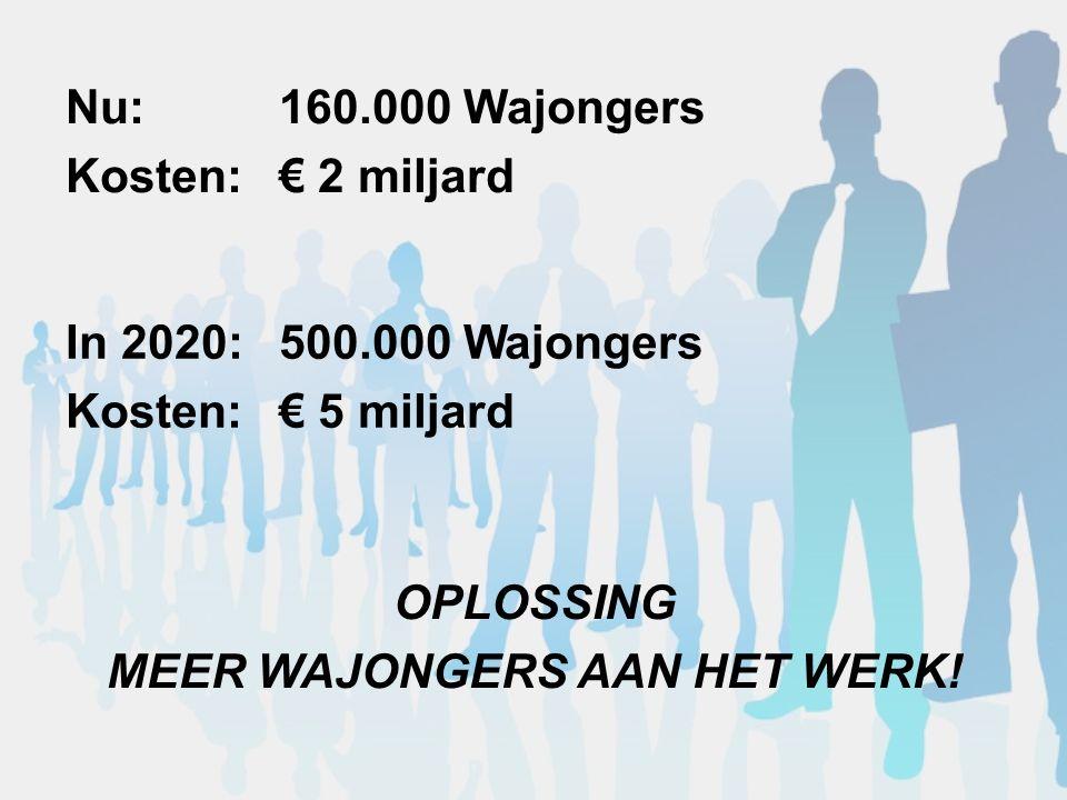 Nu:160.000 Wajongers Kosten:€ 2 miljard In 2020:500.000 Wajongers Kosten: € 5 miljard OPLOSSING MEER WAJONGERS AAN HET WERK!