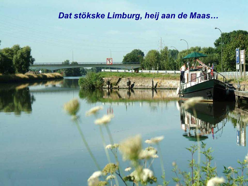 Dao boe iech mien hart höb aan verpaand Ös Limburgs Maaslaand…