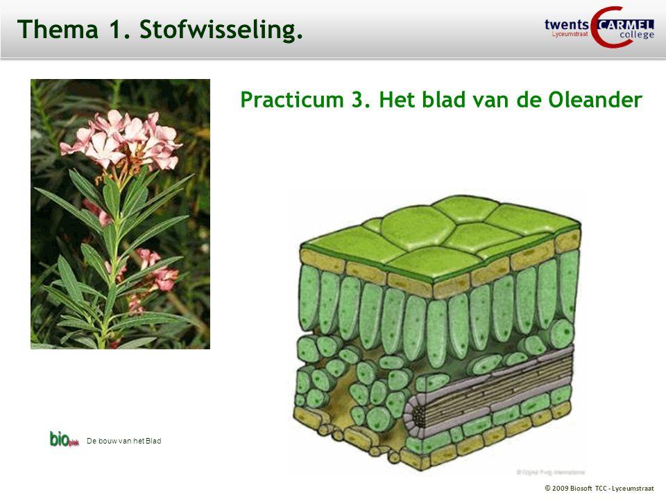 © 2009 Biosoft TCC - Lyceumstraat Thema 1.Stofwisseling.