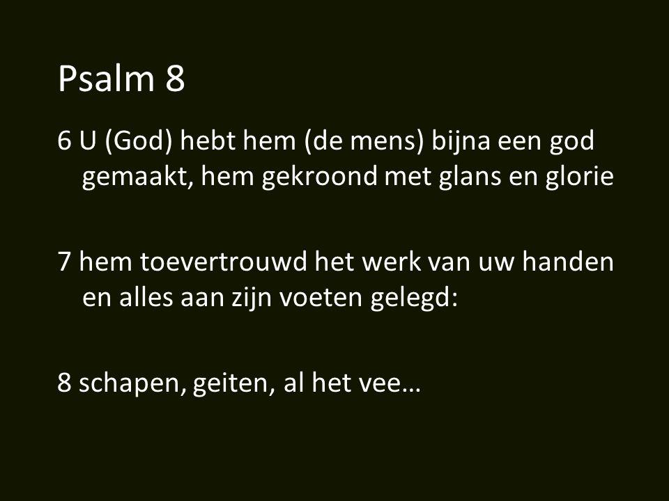 Psalm 8 6 U (God) hebt hem (de mens) bijna een god gemaakt, hem gekroond met glans en glorie 7 hem toevertrouwd het werk van uw handen en alles aan zijn voeten gelegd: 8 schapen, geiten, al het vee…
