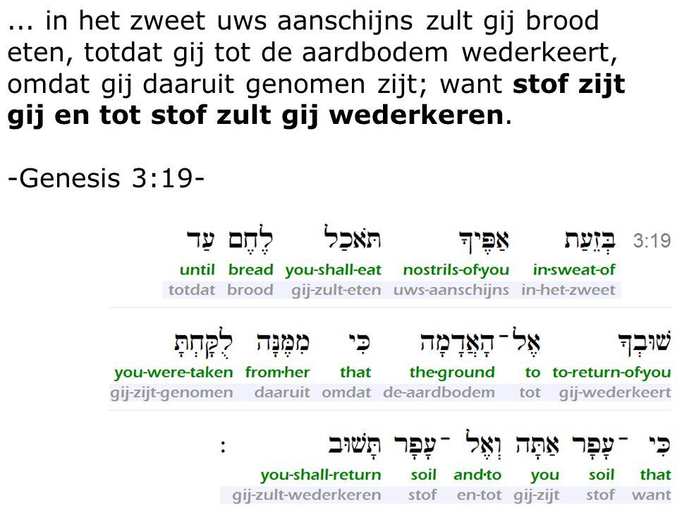9... in het zweet uws aanschijns zult gij brood eten, totdat gij tot de aardbodem wederkeert, omdat gij daaruit genomen zijt; want stof zijt gij en to