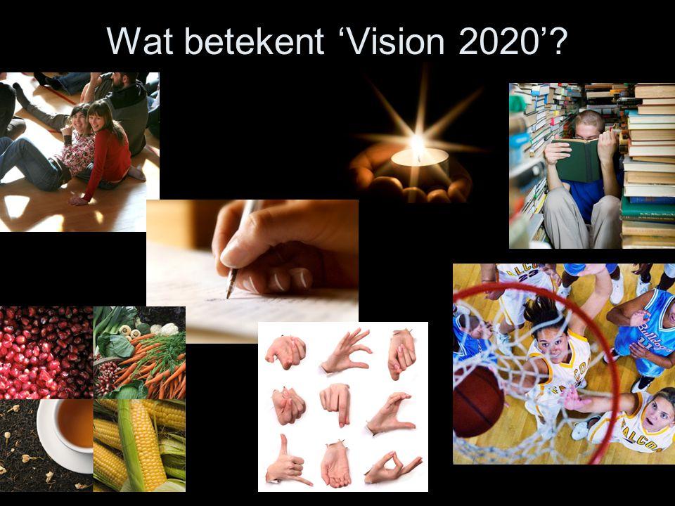 Wat betekent 'Vision 2020'?