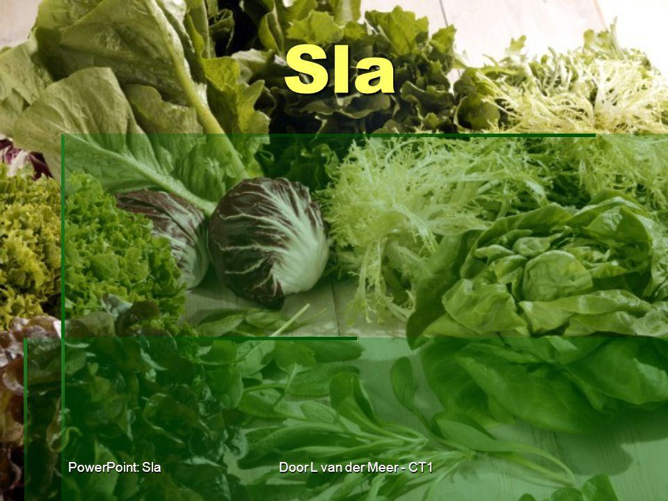 PowerPoint: SlaDoor L van der Meer - CT1 Sla