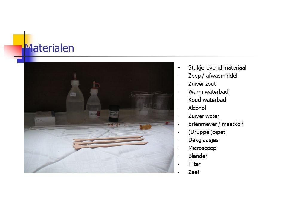 Materialen - Stukje levend materiaal -Zeep / afwasmiddel -Zuiver zout -Warm waterbad -Koud waterbad -Alcohol -Zuiver water -Erlenmeyer / maatkolf -(Dr