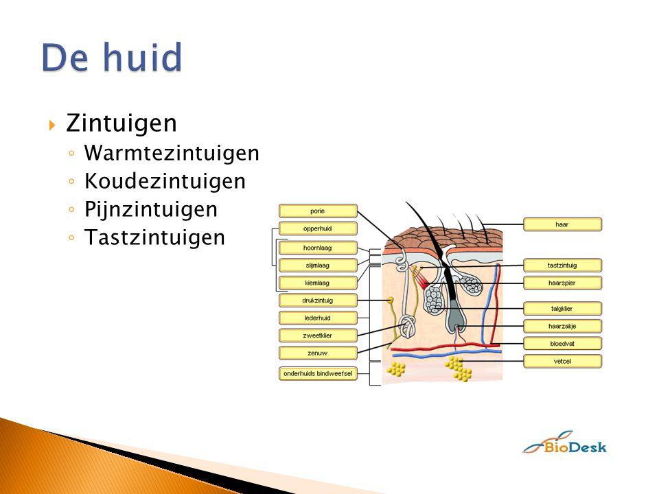  http://www.gezond24.nl/video/bekijk/je- zal-het-maar-hebben-colitus-ulcerosa-- anosmie1.htm http://www.gezond24.nl/video/bekijk/je- zal-het-maar-hebben-colitus-ulcerosa-- anosmie1.htm  5,20-9,45, 13,10-16,00, 18,50-24,30