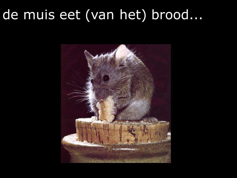 de muis eet (van het) brood...