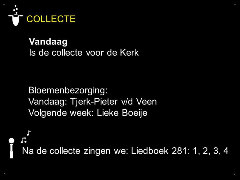 .... COLLECTE Vandaag Is de collecte voor de Kerk Bloemenbezorging: Vandaag: Tjerk-Pieter v/d Veen Volgende week: Lieke Boeije Na de collecte zingen w