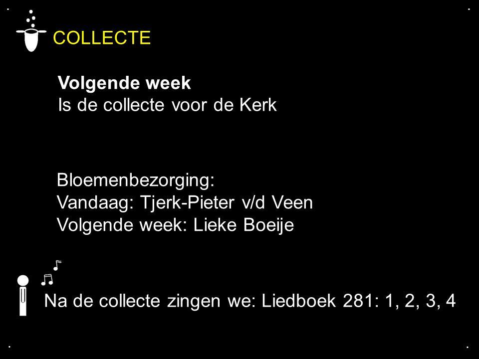 .... COLLECTE Volgende week Is de collecte voor de Kerk Bloemenbezorging: Vandaag: Tjerk-Pieter v/d Veen Volgende week: Lieke Boeije Na de collecte zi