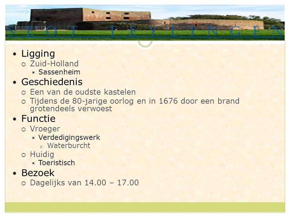 Slot Teylingen Ligging  Zuid-Holland  Sassenheim Geschiedenis  Een van de oudste kastelen  Tijdens de 80-jarige oorlog en in 1676 door een brand grotendeels verwoest Functie  Vroeger  Verdedigingswerk o Waterburcht  Huidig  Toeristisch Bezoek  Dagelijks van 14.00 – 17.00