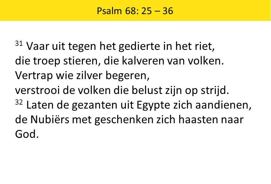 Psalm 68: 25 – 36 31 Vaar uit tegen het gedierte in het riet, die troep stieren, die kalveren van volken. Vertrap wie zilver begeren, verstrooi de vol