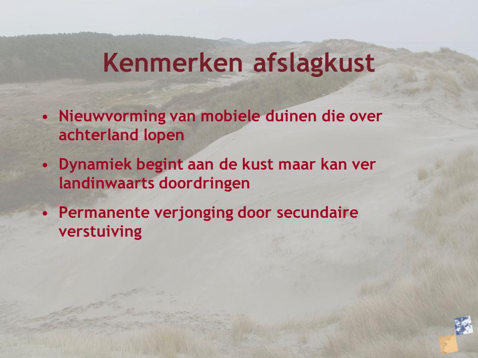 Kenmerken afslagkust Nieuwvorming van mobiele duinen die over achterland lopen Dynamiek begint aan de kust maar kan ver landinwaarts doordringen Perma