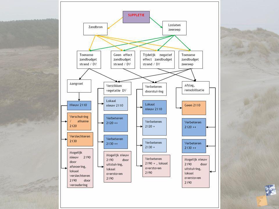 De hypotheses Verandering aanzanding door zandbron –Aangroei –Beperken afslagschade –Doorstuiving.