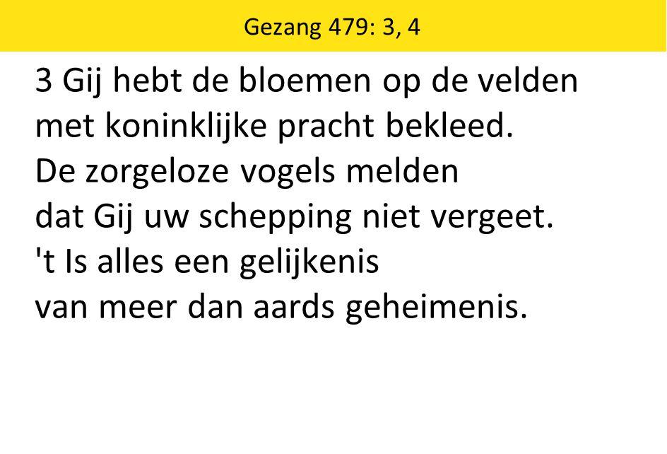 Gezang 479: 3, 4 3 Gij hebt de bloemen op de velden met koninklijke pracht bekleed. De zorgeloze vogels melden dat Gij uw schepping niet vergeet. 't I