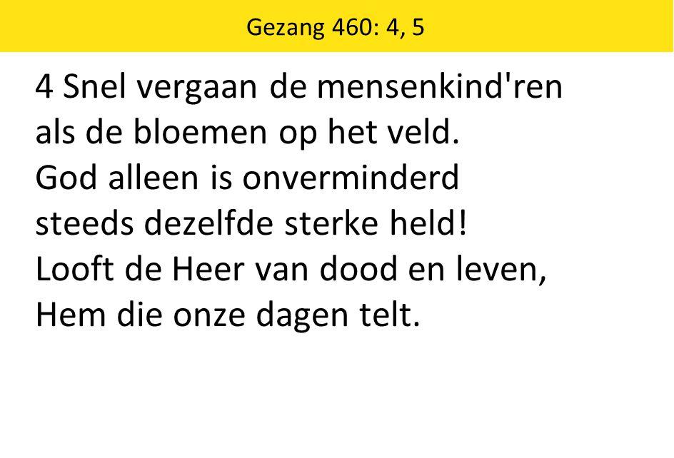 Gezang 460: 4, 5 4 Snel vergaan de mensenkind'ren als de bloemen op het veld. God alleen is onverminderd steeds dezelfde sterke held! Looft de Heer va