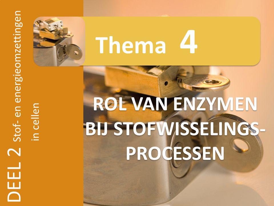 DEEL 2 Stof- en energieomzettingen in cellen ROL VAN ENZYMEN BIJ STOFWISSELINGS- PROCESSEN Thema 4