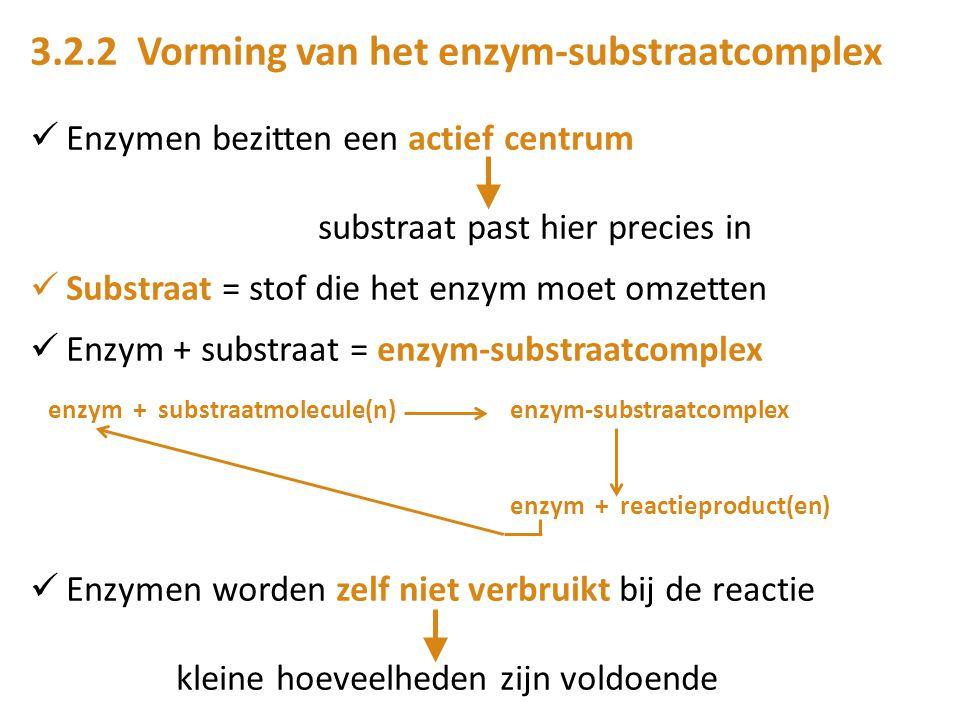 3.2.2 Vorming van het enzym-substraatcomplex Enzymen bezitten een actief centrum substraat past hier precies in Substraat = stof die het enzym moet om