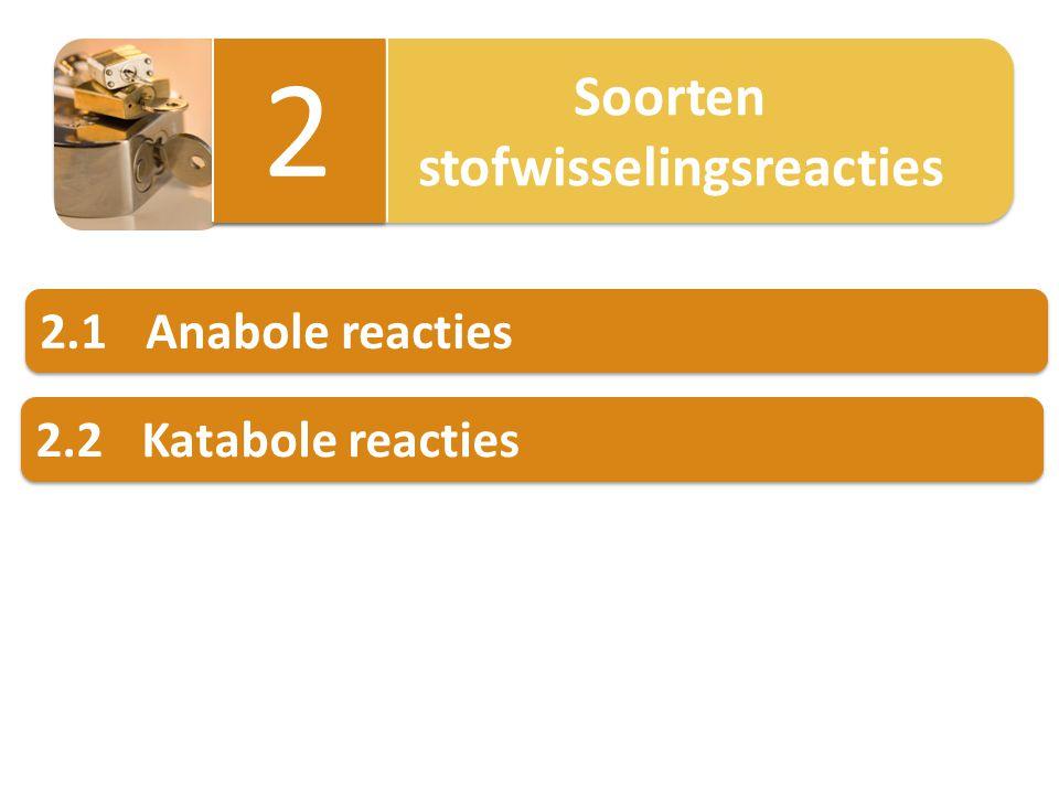 2.1Anabole reacties Anabole reacties: grotere biomoleculen worden gevormd uit kleinere.