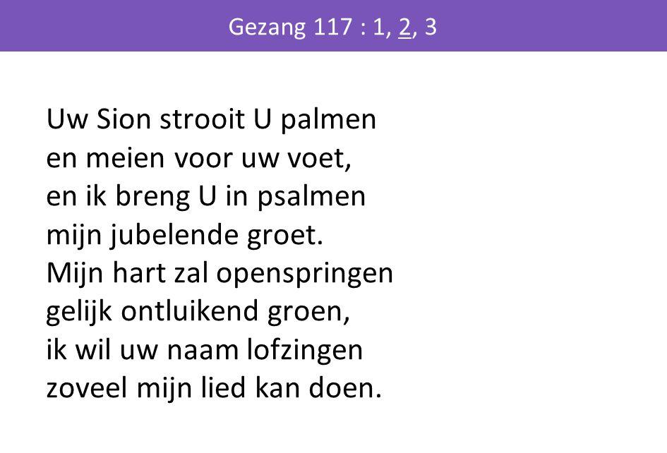 Uw Sion strooit U palmen en meien voor uw voet, en ik breng U in psalmen mijn jubelende groet. Mijn hart zal openspringen gelijk ontluikend groen, ik