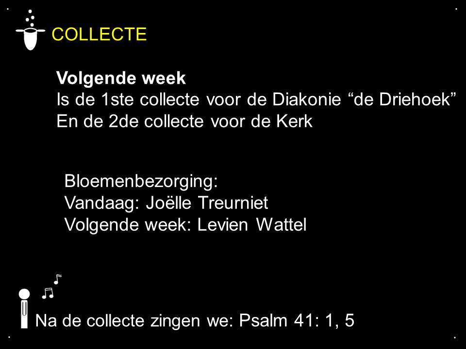 """.... COLLECTE Volgende week Is de 1ste collecte voor de Diakonie """"de Driehoek"""" En de 2de collecte voor de Kerk Bloemenbezorging: Vandaag: Joëlle Treur"""