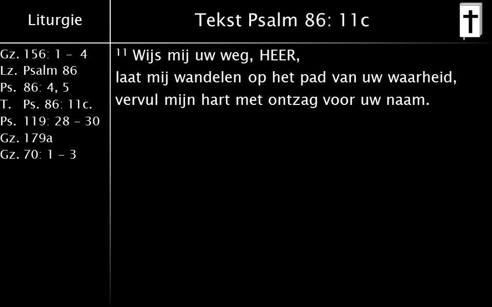 Liturgie Gz.156: 1 – 4 Lz.Psalm 86 Ps.86: 4, 5 T.Ps. 86: 11c. Ps.119: 28 - 30 Gz.179a Gz.70: 1 - 3 Tekst Psalm 86: 11c 11 Wijs mij uw weg, HEER, laat