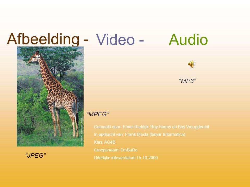 Afbeelding - Video -Audio JPEG MPEG MP3 Gemaakt door: Emiel Rietdijk, Roy Harms en Bas Vreugdenhil In opdracht van: Frank Biesta (leraar Informatica) Klas: AG4B Groepsnaam: EmBaRo Uiterlijke inleverdatum 15-10-2009