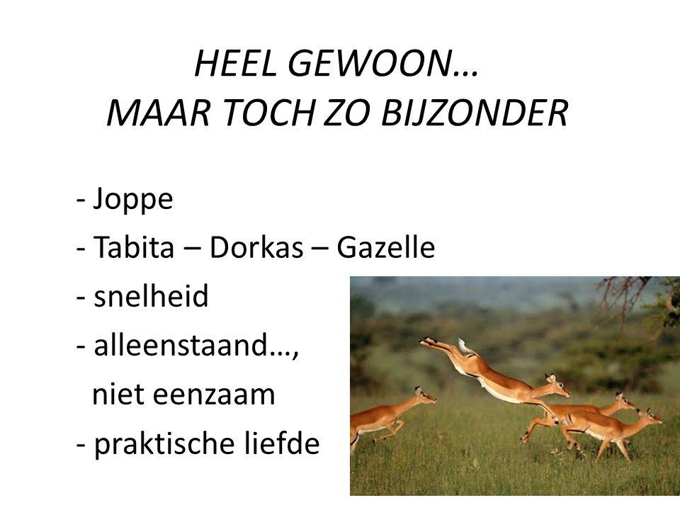 - Joppe - Tabita – Dorkas – Gazelle - snelheid - alleenstaand…, niet eenzaam - praktische liefde