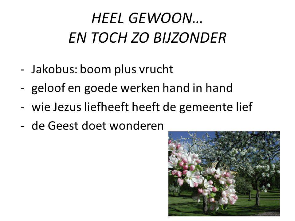 HEEL GEWOON… EN TOCH ZO BIJZONDER -Jakobus: boom plus vrucht -geloof en goede werken hand in hand -wie Jezus liefheeft heeft de gemeente lief -de Geest doet wonderen