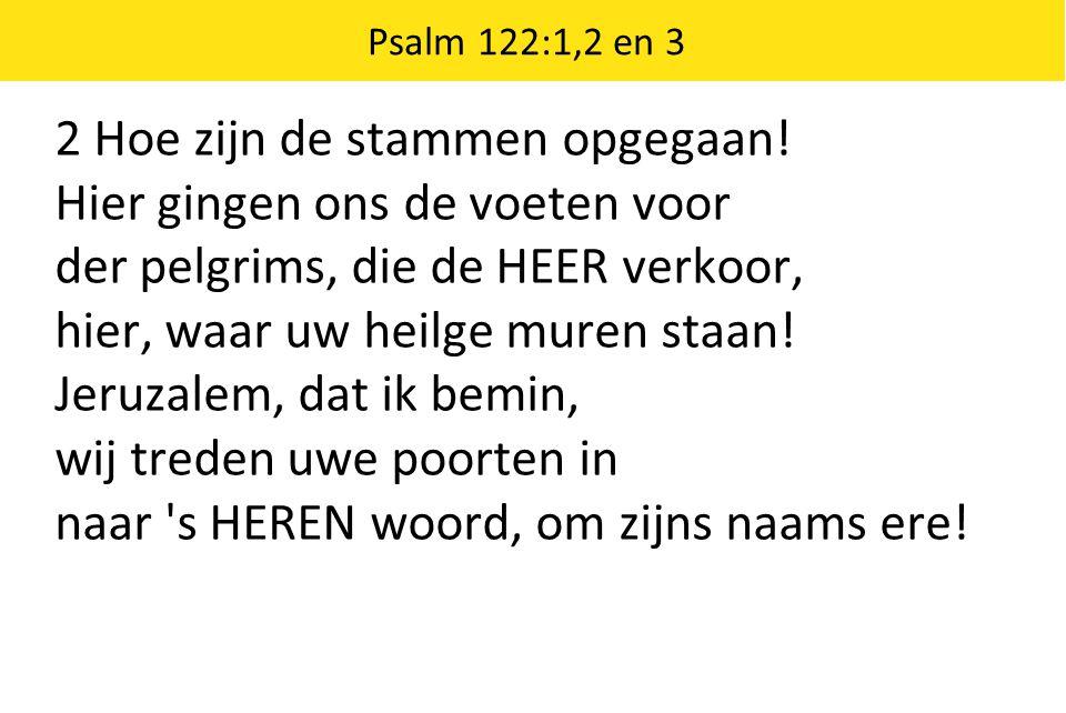 Gezang 114: 1 en 3 3 De Koning die zijn troon heeft in den hoge, houdt bij de mensen hof en alle tranen zal Hij van hun ogen afwissen tot zijn lof.