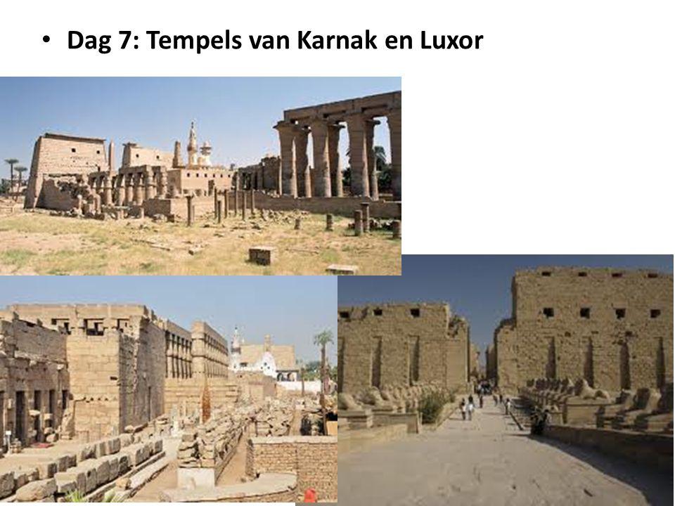Dag 7: Tempels van Karnak en Luxor