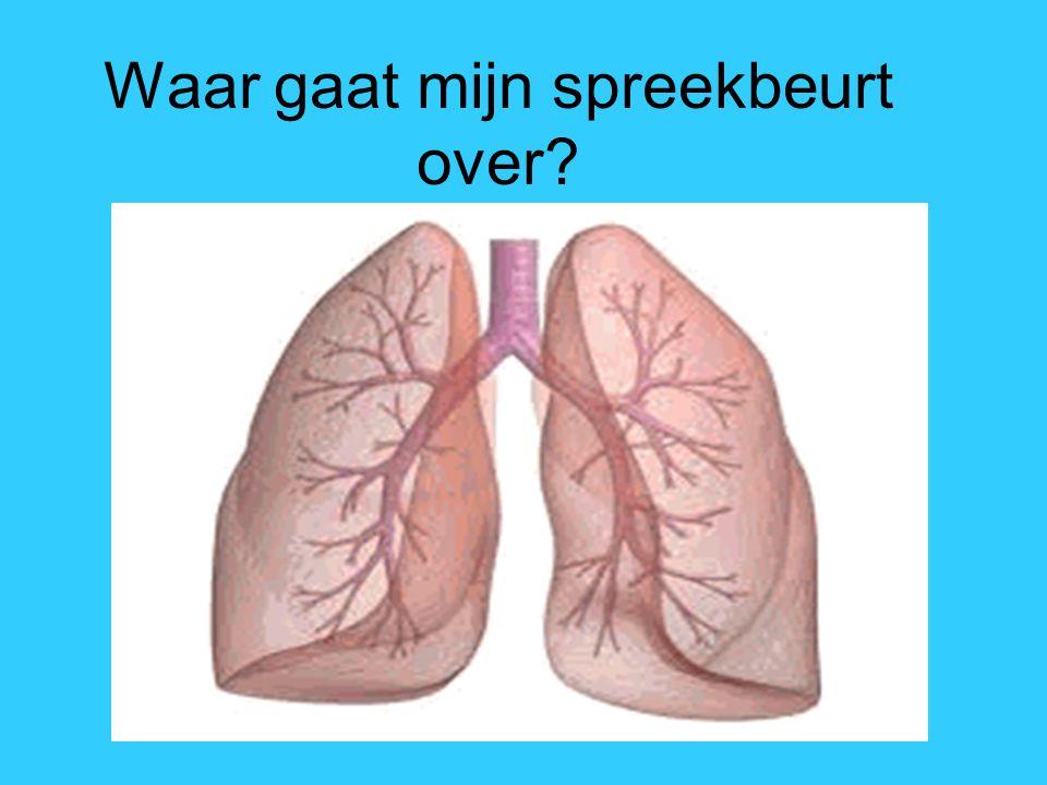 Astma Spreekbeurt Niels Hovens 16-1-2015