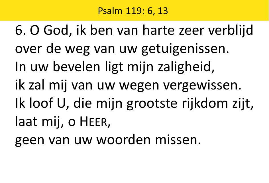 Psalm 119: 6, 13 6.O God, ik ben van harte zeer verblijd over de weg van uw getuigenissen.