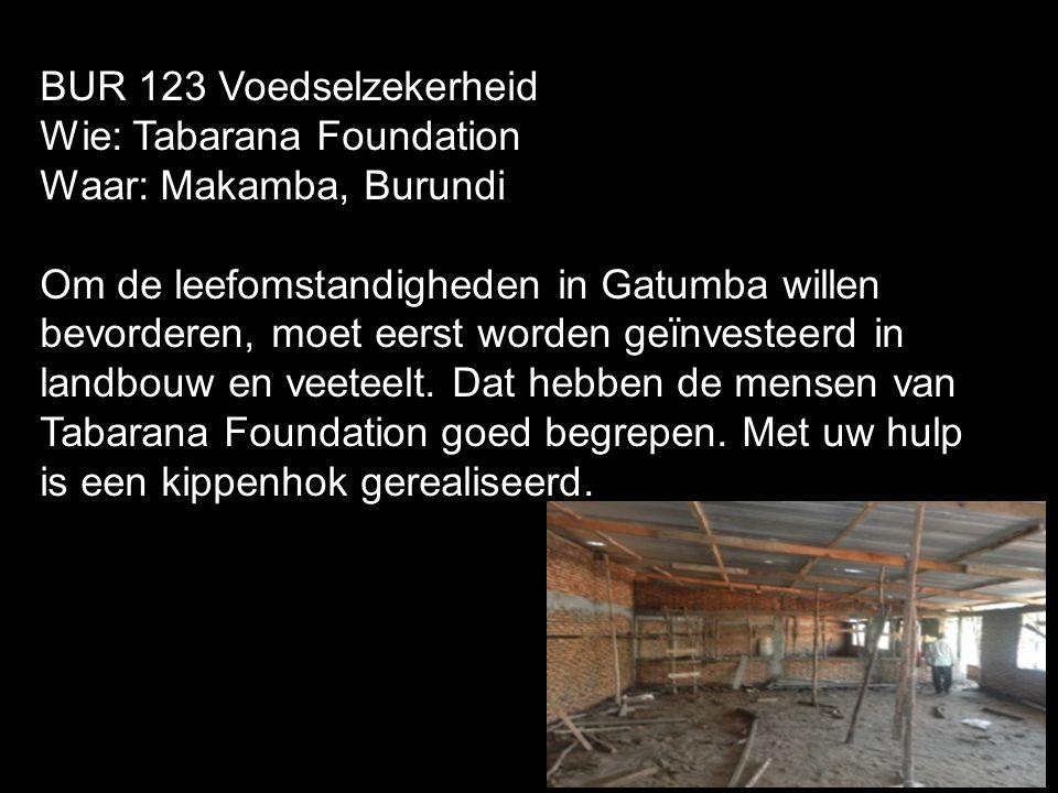 BUR 123 Voedselzekerheid Wie: Tabarana Foundation Waar: Makamba, Burundi Om de leefomstandigheden in Gatumba willen bevorderen, moet eerst worden geïn