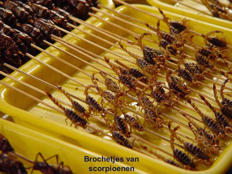 Zwarte scorpioenen Zijderupsen Gefrituurde krekels Gegrilde kakkerlakken