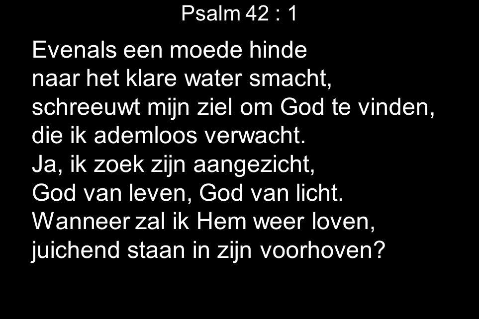 Psalm 42 : 1 Evenals een moede hinde naar het klare water smacht, schreeuwt mijn ziel om God te vinden, die ik ademloos verwacht. Ja, ik zoek zijn aan
