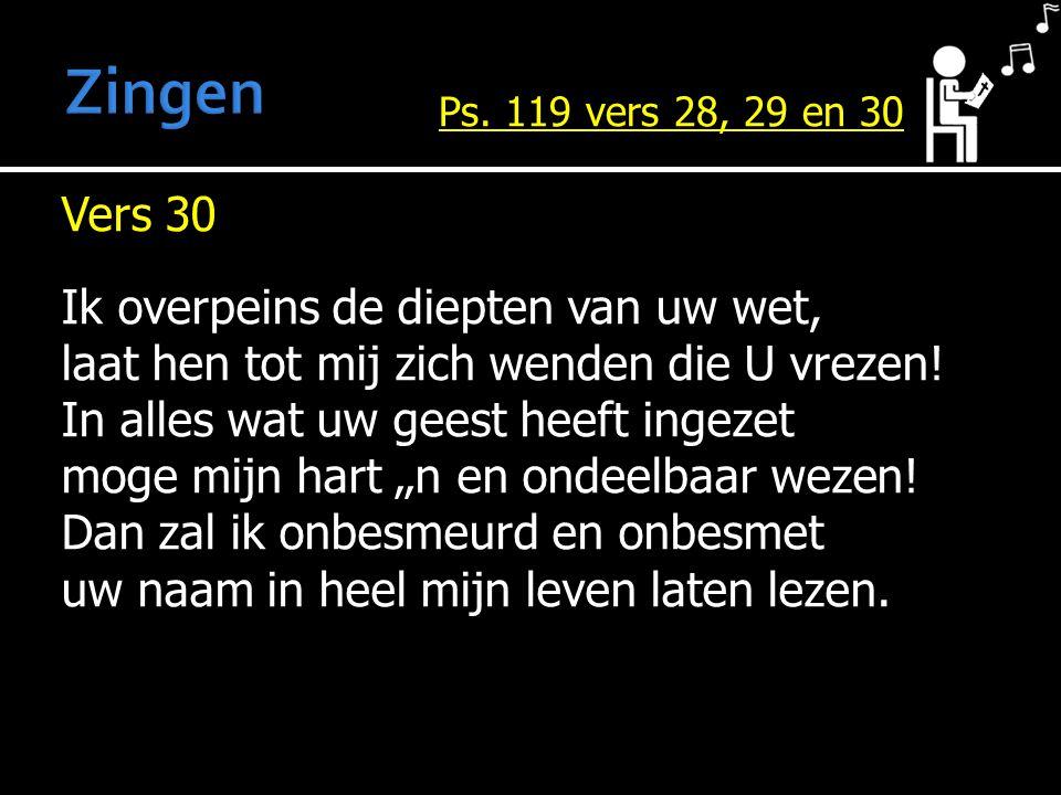 Vers 30 Ik overpeins de diepten van uw wet, laat hen tot mij zich wenden die U vrezen.