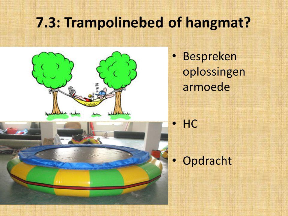 7.3: Trampolinebed of hangmat? Bespreken oplossingen armoede HC Opdracht
