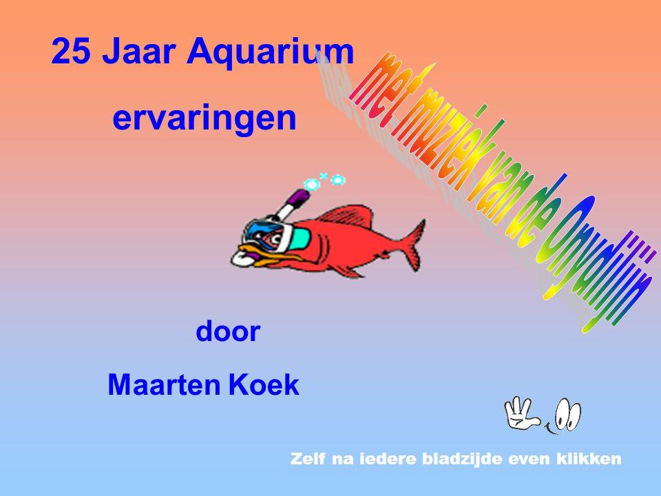 Zelf na iedere bladzijde even klikken 25 Jaar Aquarium ervaringen door Maarten Koek