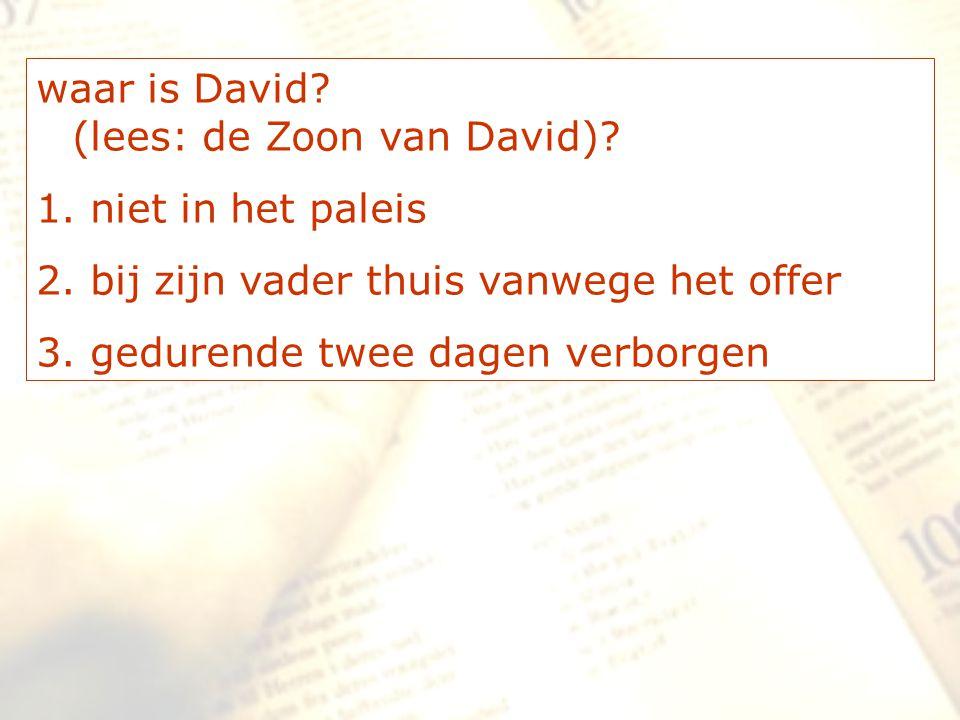waar is David? (lees: de Zoon van David)? 1. niet in het paleis 2. bij zijn vader thuis vanwege het offer 3. gedurende twee dagen verborgen
