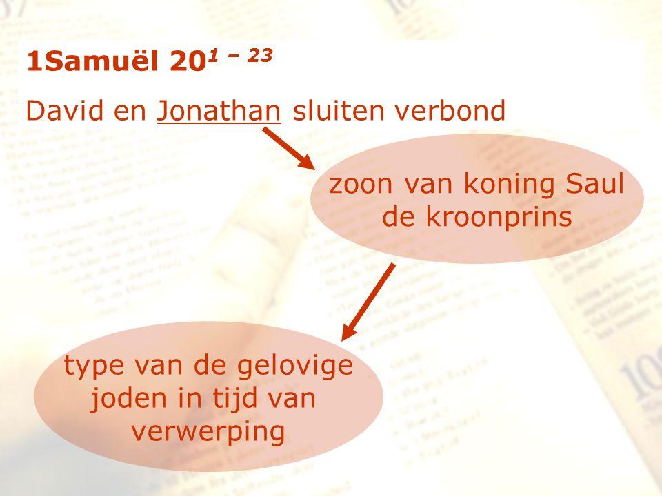 zzz 43 (David) stond op en ging heen; en Jonatan begaf zich naar de stad.