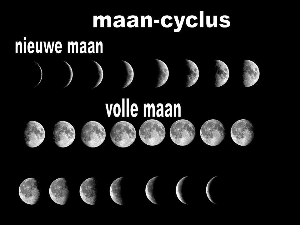 nieuwe maan bazuin geblazen (Psalm 81:4) nieuw begin zon => God – bruidegom (Psalm 19:5) maan => vrouw (Israël) > bruid
