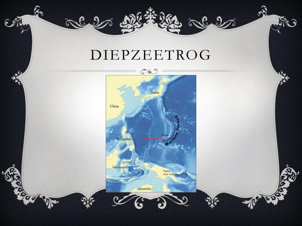 DIEPZEETROG