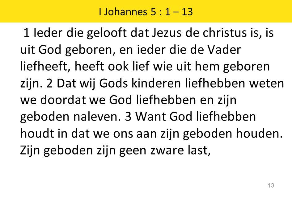 1 Ieder die gelooft dat Jezus de christus is, is uit God geboren, en ieder die de Vader liefheeft, heeft ook lief wie uit hem geboren zijn. 2 Dat wij
