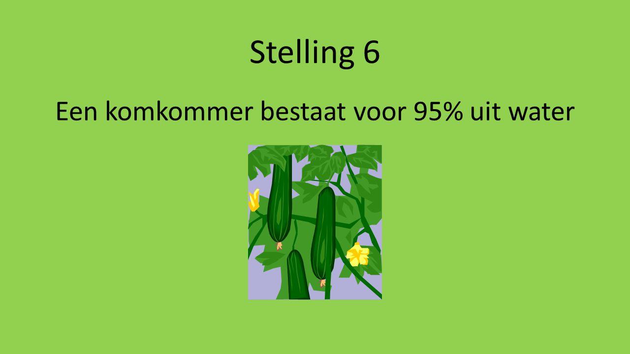 Stelling 6 Een komkommer bestaat voor 95% uit water