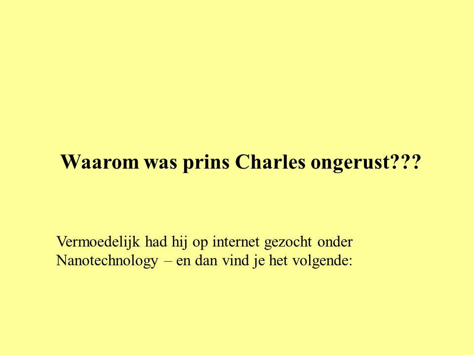 Waarom was prins Charles ongerust??? Vermoedelijk had hij op internet gezocht onder Nanotechnology – en dan vind je het volgende:
