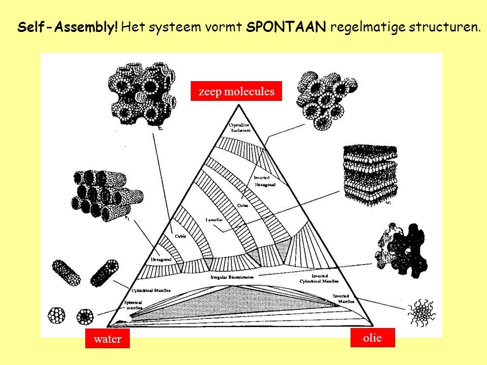 zeep molecules water olie Self-Assembly! Het systeem vormt SPONTAAN regelmatige structuren.
