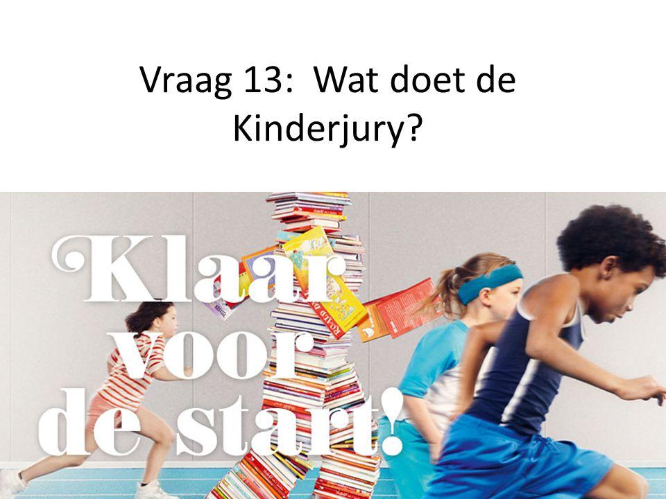 Vraag 13: Wat doet de Kinderjury?
